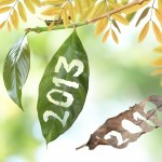 2013 &#8211; A Banner Year!